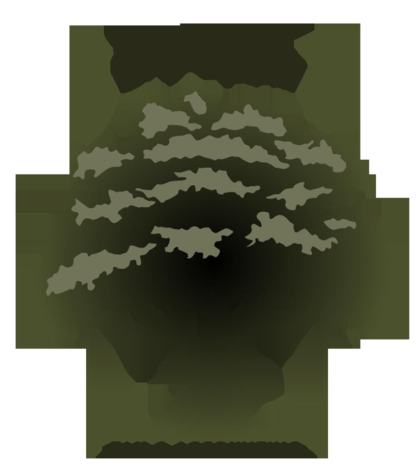 Oaks Tax Logo